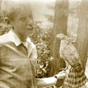 John Hawley with falcon