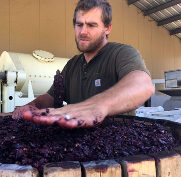 Austin Hawley using the wine press