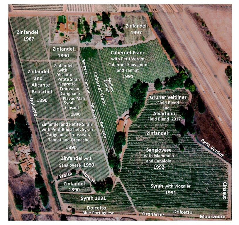 A detailed map of Alegria Vineyards showing each field-blend block