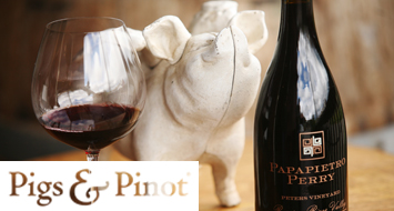 AWARD WINNER AT 2019 PIGS AND PINOT - ACQUIRE YOURS NOW!