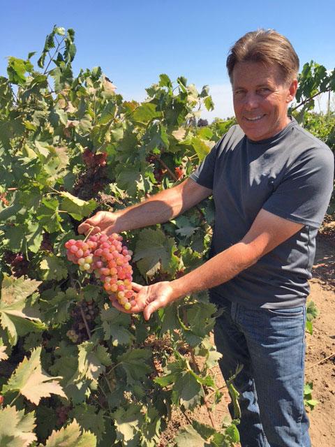 Greg Burns of Jessie's Grove Vineyard, Lodi