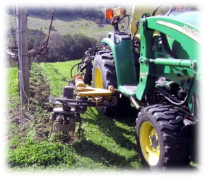 Rotary Weed Control 1