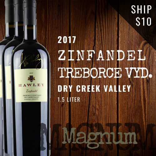 2017 Zinfandel Treborce Magnum