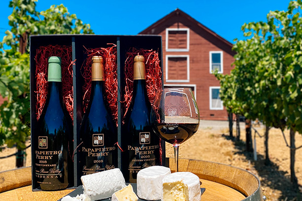 Wine and cheese on barrel in vineyard