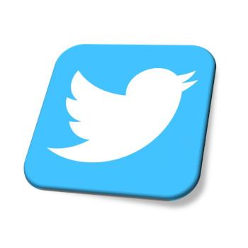 Icon-Twitter