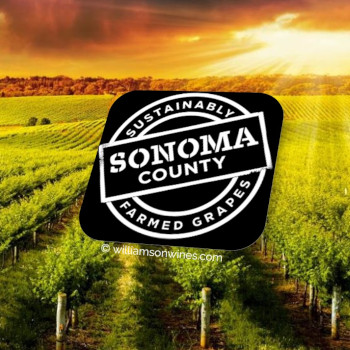 Sonoma Certified
