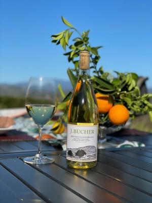 2020 Sauvignon Blanc Bucher Vineyard Russian River Valley