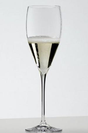 PREMIUM ~ Fizz Champagne Glass