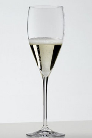 LUXURY ~ Fizz Champagne Glass