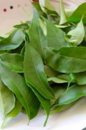 Curry Leaves (whole)