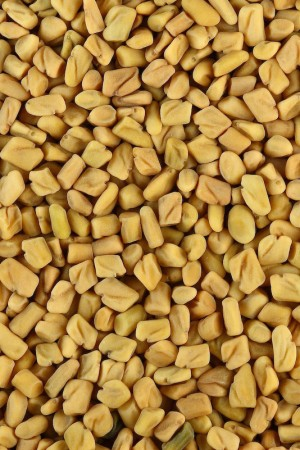 Fenugreek Seed (whole)