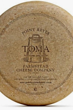 Point Reyes - Toma