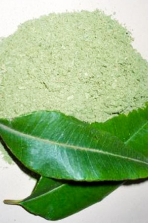 Lemon Myrtle Leaf (ground)