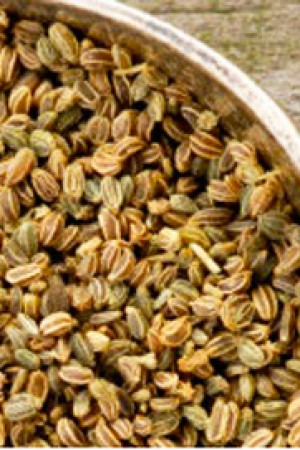 Celery Seed (ground)