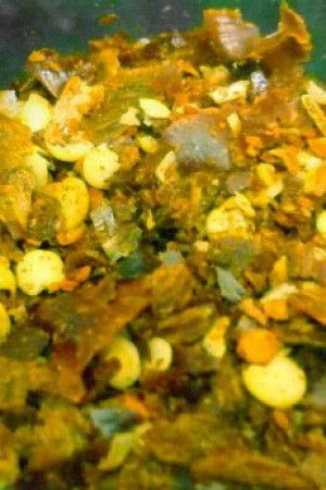 Chili Flakes Green Freeze-Dried