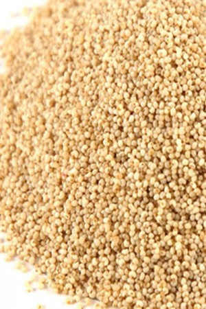 Poppy Seeds White (whole)