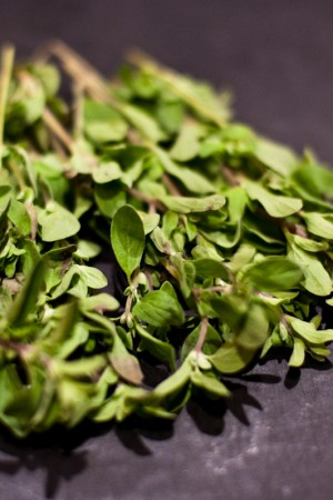 Thyme Leaves (rubbed)