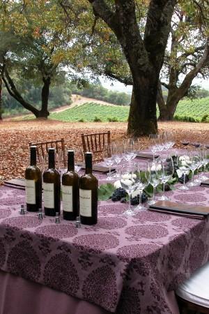 2011 TR Passalacqua Vineyard Cabernet Sauvignon, Blocks 18 & 19