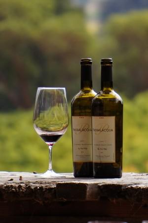 2006 TR Passalacqua Vineyard Cabernet Sauvignon
