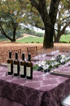 2007 TR Passalacqua Vineyard Cabernet Sauvignon, Block 13