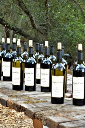 2007 TR Passalacqua Vineyard Cabernet Sauvignon