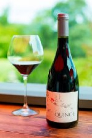 2018 Quince Pinot Noir, Russian River Valley